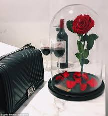 Enchanted Rose That Lasts A Year   my lasting bouquet creates beauty and the beast inspired rose that
