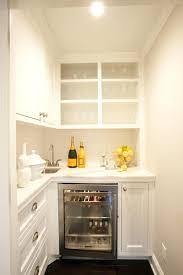 sinks butlers pantry bar basement wet sink pump ideas dimensions