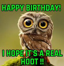 Owl Birthday Meme - happy birthday owl memes memes pics 2018