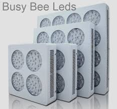 commercial led grow lights busy bee led lights industrial and commercial high power led lights