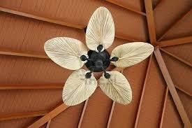 unusual ceiling fans interior design fanimation palmetto 2 section 220 volt ceiling fan
