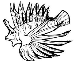 fish coloring pages print lionfish venomous spiky fin rays coloring pages scorpion coloring