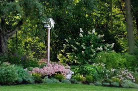 how to start a garden u2014 10 tips for beginners houzz
