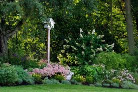 10 tips to start a garden u2014 can do ideas for beginners
