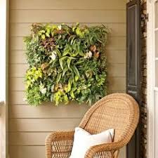 Indoor Container Gardening - incredible and easy indoor container ideas container gardening