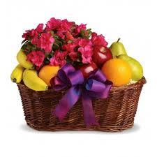 send fruit basket send gifts to kala plant and fruit basket uganda