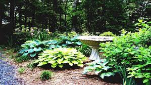 design house garden software garden ideas garden landscaping ideas 3d garden design software