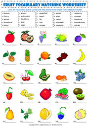 fruits esl printable worksheets and exercises