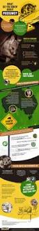 a comprehensive guide on possums u2013 submit infographics
