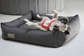 canapé lit pour chien petit canape pour enfant 9 lit pour chien cgrio