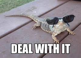 Reptile Memes - beardie says deal with it know your meme