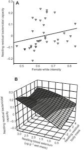 relationships among plumage coloration blood selenium