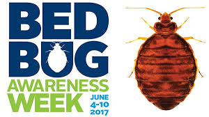 Do Bed Bugs Jump From Person To Person Bed Bugs What Every Camp Needs To Know American Camp Association