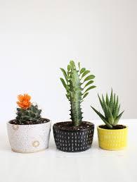 unique indoor planters decoration huge conch ceramic vase flower indoor planter ideas