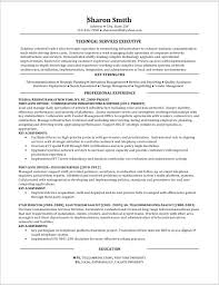 It Executive Resume Samples by Work Samples Ventureready Llc