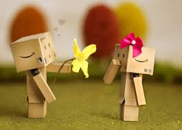 for you danbo danbo and box