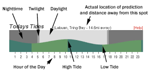 Oregon Tide Tables Tide Predictions Understanding Your Msw Forecast Surf