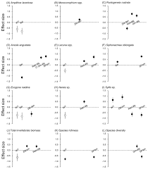 influence of different types of sessile epibionts on the community