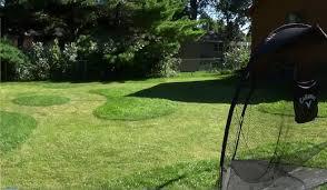 Backyard Golf Course by Backyard Golf Chipping Course 2015 Youtube