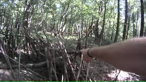 Bow Ground Blind Natural Ground Blind Made Of Poison Ivy Youtube