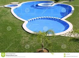 shapes swimming pools home design