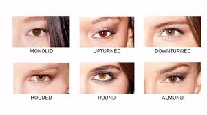 understand your eye shape