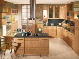 kitchen cabinet cool modern kitchen cabinets with steinless