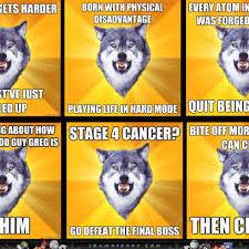 Meme Wolf - advice wolf memes
