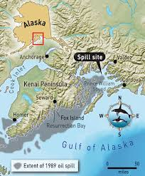 Homer Alaska Map the woman who loves orcas nrdc