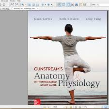 psychology and anatomy image collections learn human anatomy image
