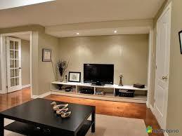 Basement Bedroom Design General Living Room Ideas Basement Renovation Designs Basement
