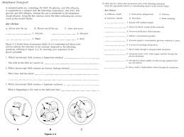 unit 2 worksheet passive and active transport
