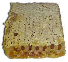 edible honeycomb 4 reasons you must taste honeycomb 4 is surprising