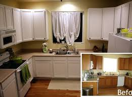 inside kitchen cabinet ideas painting inside kitchen cabinets spurinteractive