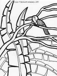tropical coloring pages free coloring pages of tropical plants 902 bestofcoloring com