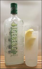 tom collins bottle 114 best gin and tonic images on pinterest tonic water gin and