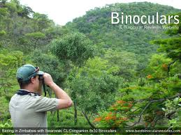 guide to bird watching binoculars best binoculars for bird watching