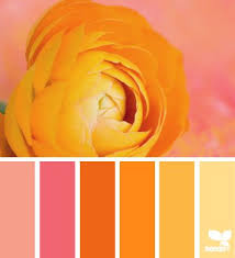 22 best combo images on pinterest color palettes colors and