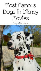 top 5 most famous dogs in disney movies dogvills