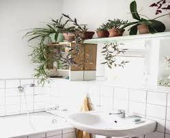 glasbilder fã r badezimmer pflanzen fur badezimmer bananaleaks co