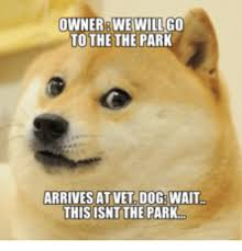 Disappointed Dog Meme - owner we will go to the the park arrives at vet dog wait this isnt