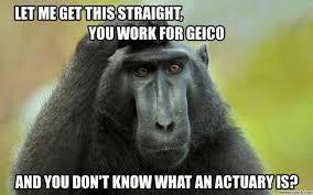 Funny Monkey Meme - very funny monkey meme photo wishmeme