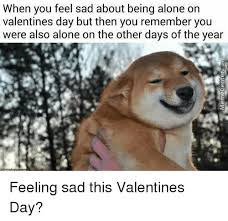 Feeling Sad Meme - when you feel sad about being alone on valentines day but then you