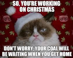 Cat Christmas Memes - grumpy cat christmas memes imgflip