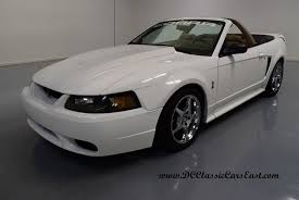Used Black Mustang 1999 Used Ford Mustang Real Cobra Vortech Supercharged Lots Of