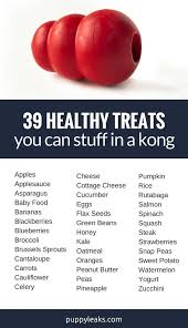 What Can I Mix With Cottage Cheese by 39 Healthy Treats You Can Stuff In A Kong Puppy Leaks