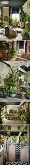 hippie home decor uk interior designer sera hersham loftus u0027s bohemian plant filled