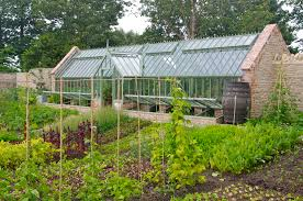 a 3 4 span greenhouse at the centre of their highly productive