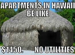 Hawaii Memes - 21 hilarious hawai i memes that are too real for locals honolulu