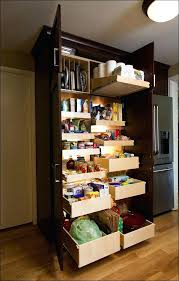file cabinet with pull out shelf under cabinet pull out shelf sukuosenos info